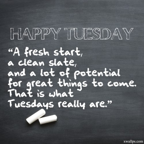 20 Motivational Quotes and Tuesday Thought Wallpapers 06 - That is what Tuesdays really are