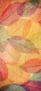Free Wallpaper for Samsung Galaxy A12 with Transparent Autumn Leaves