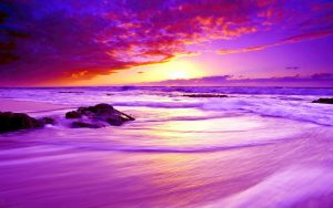 Nature Wallpaper for Desktop Background with Low Exposure Photo of Purple Beach