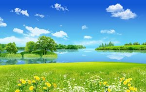 Nature animated wallpaper with Spring Flower and River