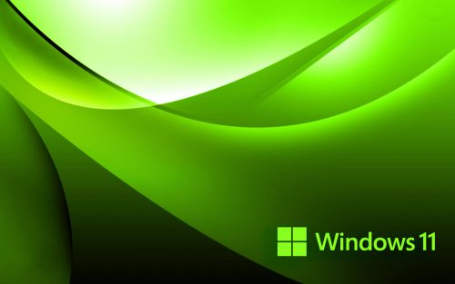 Abstract Green Background with Official Logo of Windows 11