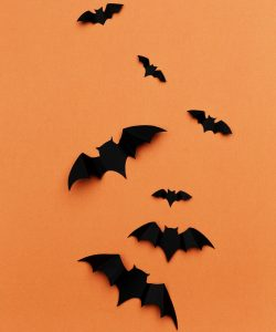 Happy Halloween Images with Picture of Bats on Orange Background